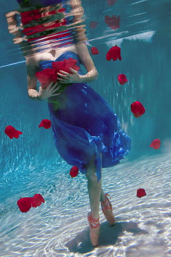 Taylor Dawn Fortune WOMAN HOLDING ROSES UNDERWATER Women