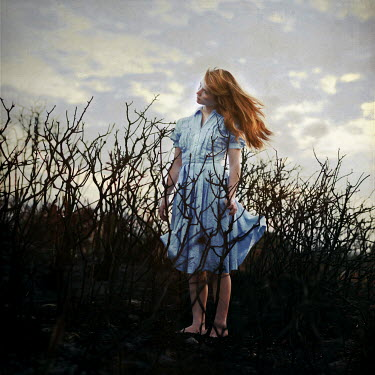 Masha Sardari BLONDE WOMAN STANDING IN BARE BUSHES Women