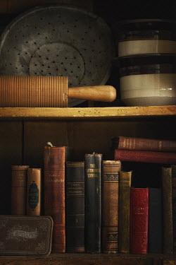 Elisabeth Ansley OLD BOOKSHELF Interiors/Rooms