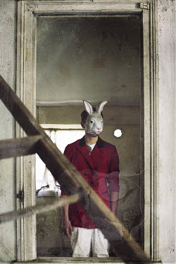 Samantha Nandez Man wearing rabbit mask Men