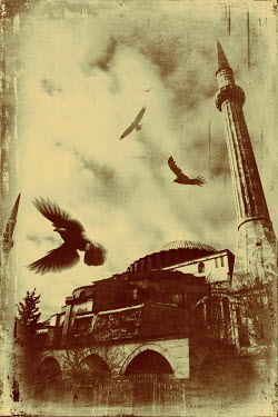 Irene Lamprakou TOWER AND BUILDINGS WITH BIRDS Specific Cities/Towns