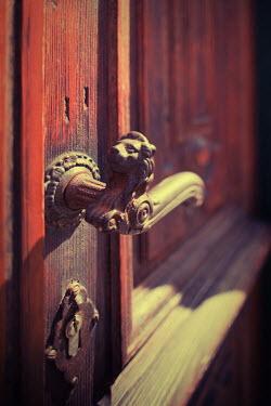 Yulya Saponova DOOR HANDLE WITH LION'S HEAD Building Detail