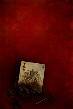 David Pairé BURNT ACE OF SPADES PLAYING CARD Miscellaneous Objects