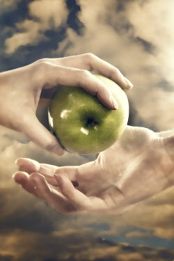 Elisabeth Ansley HANDS OF MAN AND WOMAN WITH APPLE Body Detail