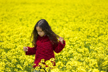 Fernando Arias Ramos GIRL IN RED JUMPER IN FILED OF YELLOW FLOWERS Women