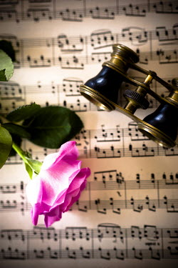 Jitka Saniova OPERA GLASSES WITH MANUSCRIPT AND ROSE Miscellaneous Objects
