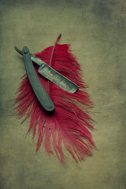 Mohamad Itani CUT-THROAT RAZOR WITH RE FEATHER Miscellaneous Objects