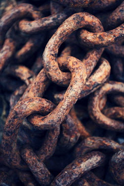 Trevor Payne RUSTED LINKS OF CHAIN Miscellaneous Objects