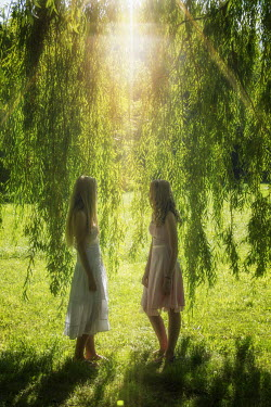 Elisabeth Ansley TWO WOMEN STANDING BY WEEPING WILLOW Women