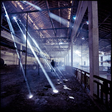Christophe Dessaigne man standing in derelict building Men