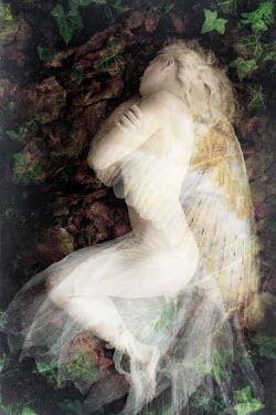 Clayton Bastiani DEAD ANGEL LYING WITH IVY Women
