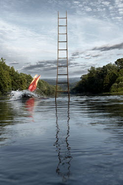 Stephen Carroll WOMAN DIVING IN LAKE FROM STEP LADDER Women
