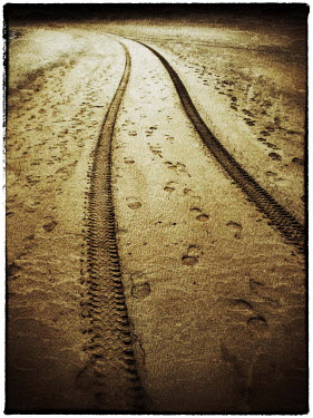 Harry Pettis TYRE TRACKS AND FOOTPRINTS Paths/Tracks