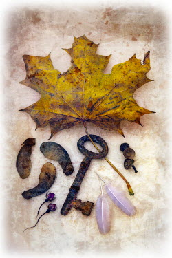 Paul Knight COLLECTION WITH LEAF AND KEY Miscellaneous Objects