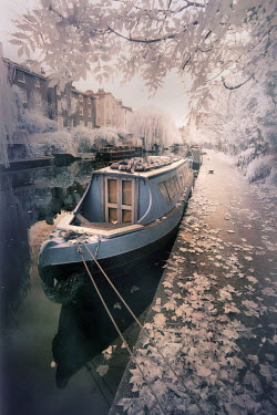 Paul Knight CANAL BOAT MOORED BY HOUSES Boats