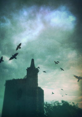Mark Owen GOTHIC BUILDING WITH BIRDS FLYING Miscellaneous Buildings