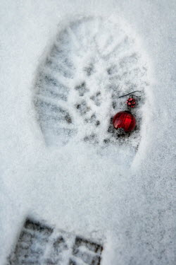 Ilona Wellmann FOOTPRINT IN SNOW WITH EARRING Miscellaneous Objects