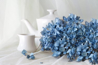 Agnieszka Kielak COFFEE POT AND BLUE FLOWERS Miscellaneous Objects