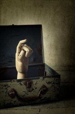 Amy Weiss DUMMY HAND IN OLD METAL BOX Miscellaneous Objects