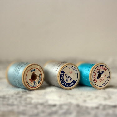 Michelle Anderson REELS OF BLUE COTTON THREAD Miscellaneous Objects