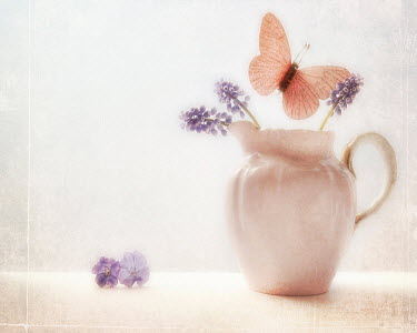 Michelle Anderson BUTTERFLY WITH JUG AND FLOWERS Insects