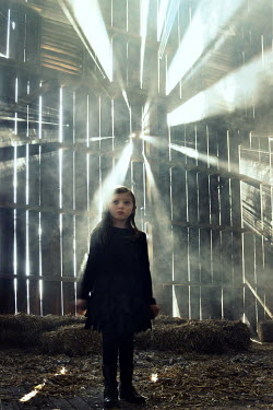 Stephen Carroll GIRL IN SUN-FILLED OLD BARN Children