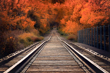Jake Olson EMPTY RAILWAY TRACK IN AUTUMN Railways/Trains