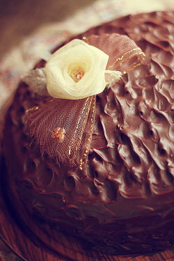 Sara Helwe CHOCOLATE CAKE WITH WHITE FLOWER Miscellaneous Objects