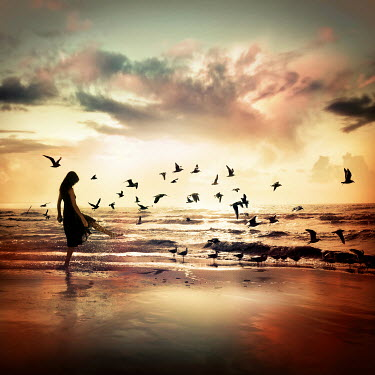Dragan Todorovic WOMAN ON BEACH WITH BIRDS Women