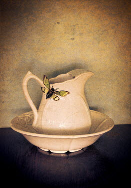 Jill Battaglia INSECT ON WHITE CHINA JUG Insects