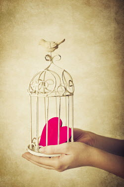 Jitka Saniova HANDS HOLDING HEART IN CAGE Body Detail
