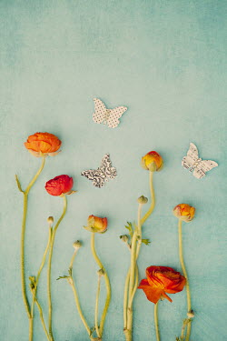 Susan O'Connor FLOWERS WITH CUT-OUT BUTTERFLIES Insects
