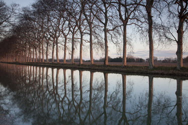 Tony Worobiec TREES BY TRANQUIL RIVER Lakes/Rivers