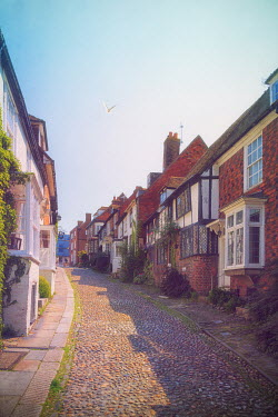 Paul Grand OLD COBBLED STREET WITH HOUSES Streets/Alleys