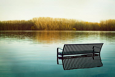 Eva Ricci METAL BENCH IN TRANQUIL LAKE Lakes/Rivers