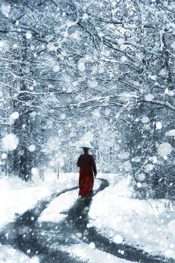 Tim Daniels WOMAN WALKING ON SNOWY ROAD Women