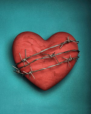 Peter Hatter HEART WITH BARBED WIRE Miscellaneous Objects