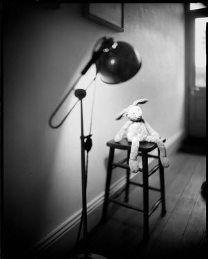 Andrew Sanderson TOY RABBIT ON CHAIR WITH LIGHT Miscellaneous Objects