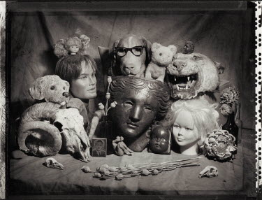 Andrew Sanderson DOLLS HEADS AND ANIMAL SKULL Miscellaneous Objects