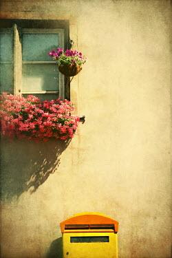 Irene Lamprakou FLOWERS IN WINDOW BOX Miscellaneous Objects
