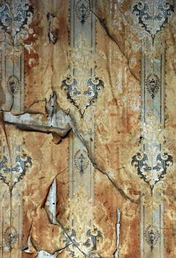Jill Battaglia OLD PEELING WALLPAPER Building Detail