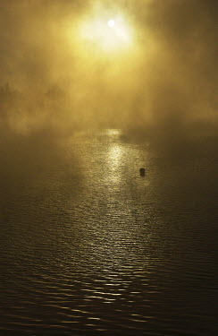Terry Bidgood BUOY ON FOGGY LAKE Seascapes/Beaches
