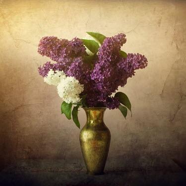 Agnieszka Kielak FLOWES IN GOLD VASE Flowers
