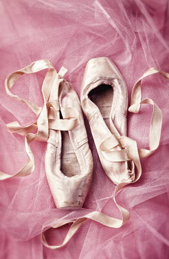 Amy Weiss THREADBARE BALLET SHOES Miscellaneous Objects