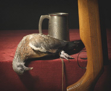 Brian Law DEAD BIRD WITH SHOT GUN AND PEWTER TANKARD Miscellaneous Objects