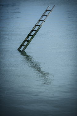 Colin Hutton LADDER IN WATER Miscellaneous Objects