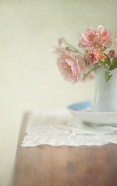 Jill Ferry FLOWERS IN JUG ON TABLE Flowers