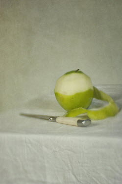 Jill Ferry APPLE AND KNIFE ON TABLE Miscellaneous Objects