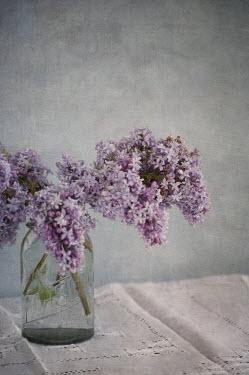 Jill Ferry FLOWERS IN JAR Flowers