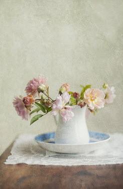 Jill Ferry PINK FLOWERS IN MILK JUG Flowers